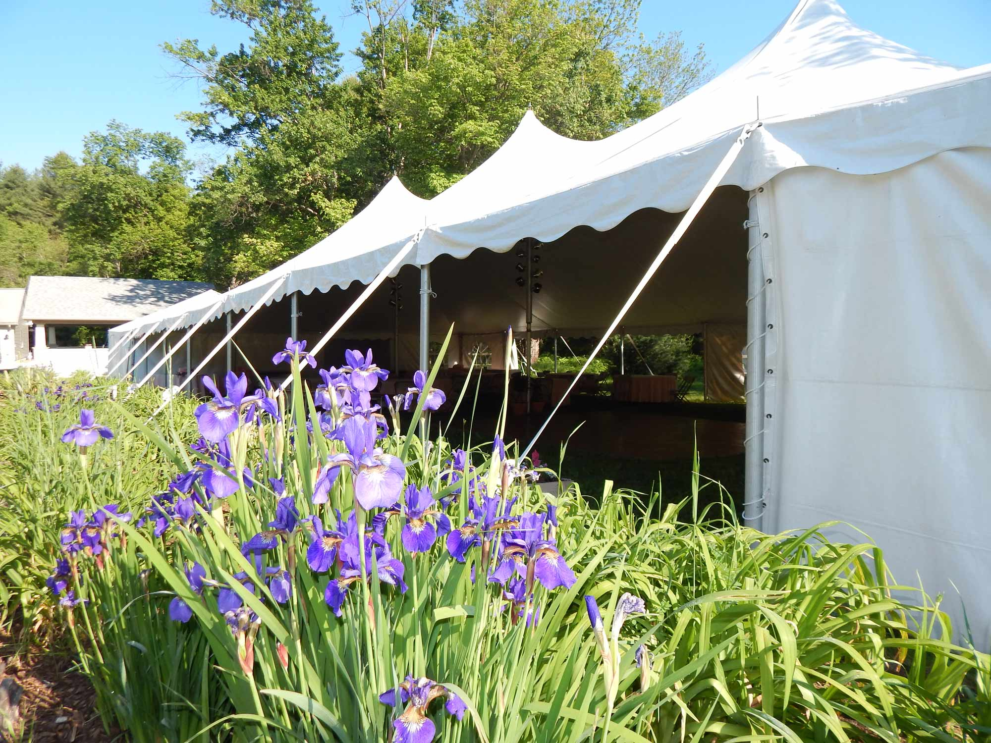 Hampden MA, Wedding Tent, 40'x80'